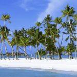 Зарегистрировать оффшорную компанию в Невисе онлайн из Баку