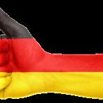 Компании, банковские счета, ВНЖ, ПМЖ и Гражданство Германии