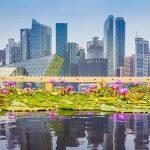 Бизнес в Сингапуре. Какие формы предприятий популярны были в 2017 году?