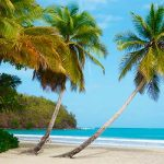 Спрос на гражданство Гренады за инвестиции за год вырос на 300%, уровень отказов упал до 8%