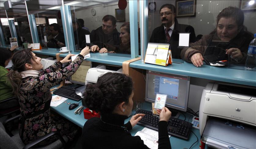 оформление турецких паспортов