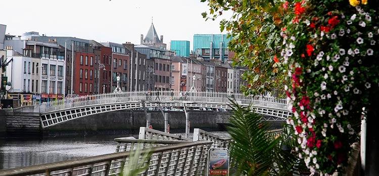 Открыть ирландскую компанию дистанционно