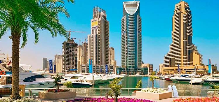 компании, зарегистрированные в ОАЭ