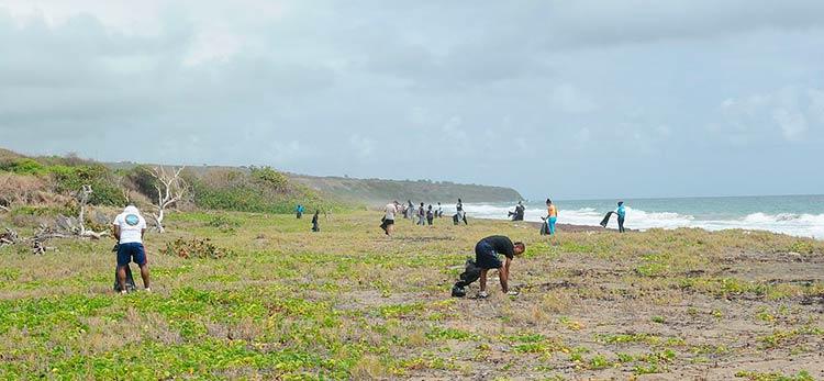 Annual International Coastal Cleanup