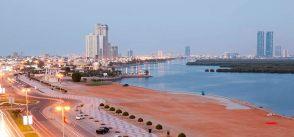 Регистрация оффшорной компании в ОАЭ в Рас-Аль-Хайме (в RAK ICC). Ликвидация компании с разделенными портфелями