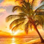 4 карибские юрисдикции под ударом Райских бумаг