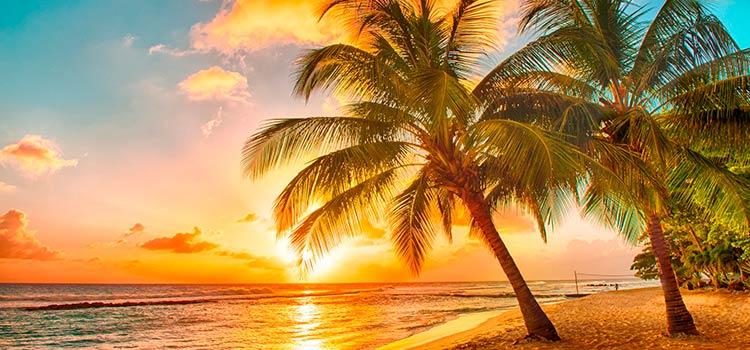 Невис, Аруба, Барбадос и Багамы
