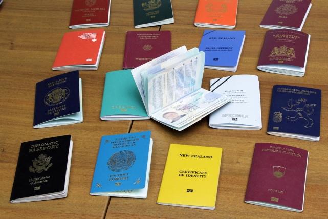 оформить второй паспорт и гражданство