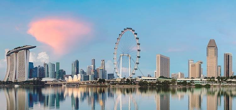Сравнительная характеристика двух форм бизнеса в Сингапуре