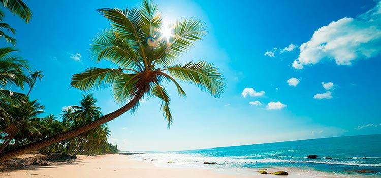 Инвестиционный SMART-фонд на Багамских островах