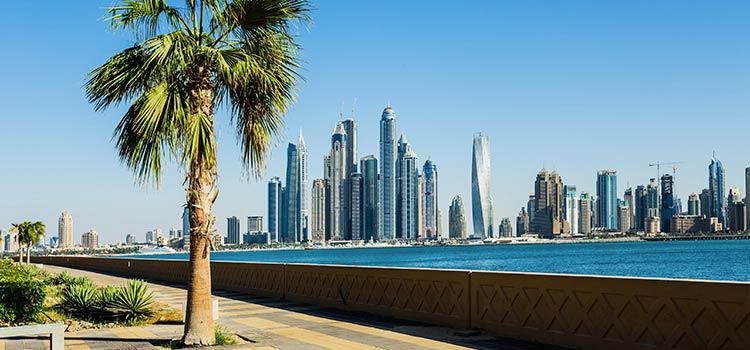 Регистрация компании в ОАЭ – нарушения трудового законодательства