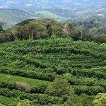 Перспективный инвестиционный проект в провинции Чирики, Панама