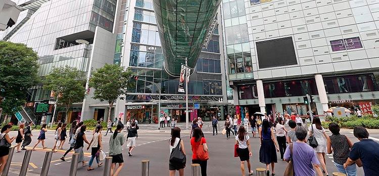 Малый бизнес в Сингапуре. ТОП-10 областей для запуска стартапа