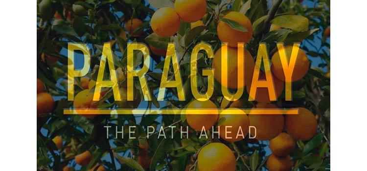 Инвестиции в Парагвае в апельсиновые плантации