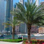Регистрация компании в ОАЭ – понятие «добросовестности» при заключении договоров в ОАЭ