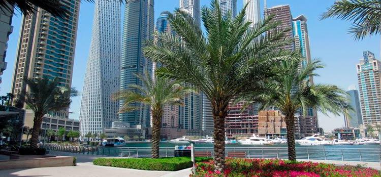 заключение договоров в ОАЭ
