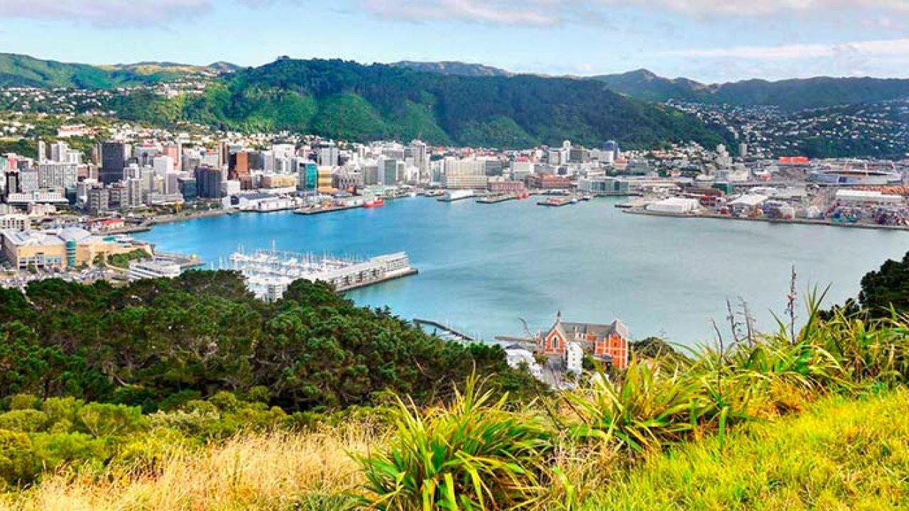 Недвижимость в новой зеландии недорого дом на майорке в аренду