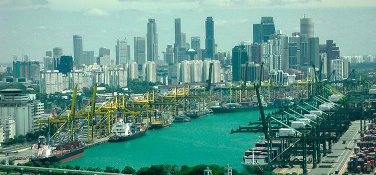 сферы логистики и регистрации юридического лица в Сингапуре