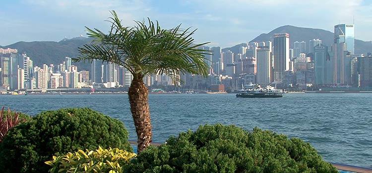 регистрировать оффшор в Гонконге