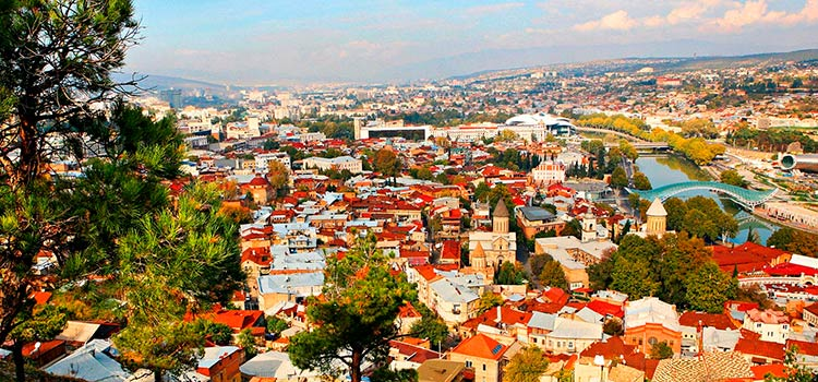 бизнес в свободной индустриальной зоне Тбилиси