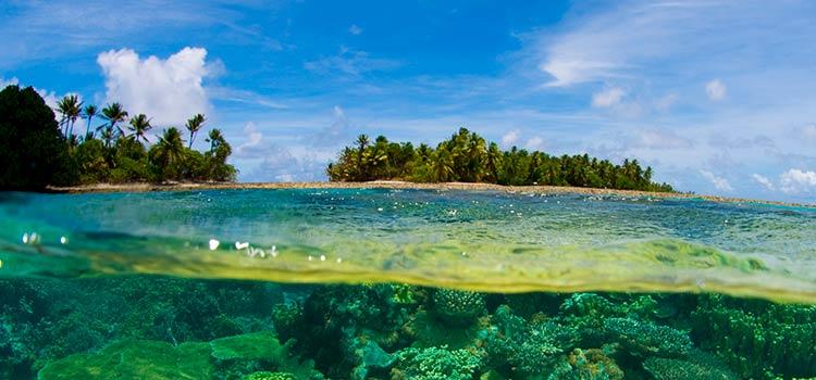 Как зарегистрировать партнёрство на Маршалловых островах
