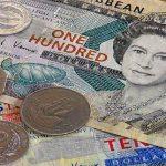 Цены в Сент-Китс и Невис: узнаем, оформляя гражданство за инвестиции