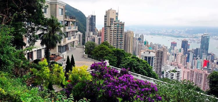 безналоговый статус компании в Гонконге