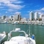 Услуги риелтора в Уругвае: почему стоит обратиться к профессионалам?