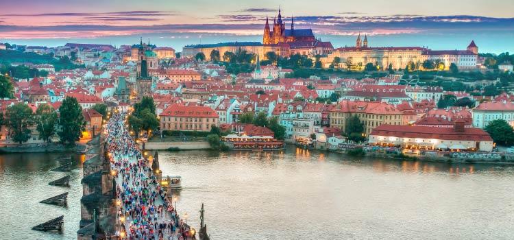 Воспользоваться услугами директора в Чехии