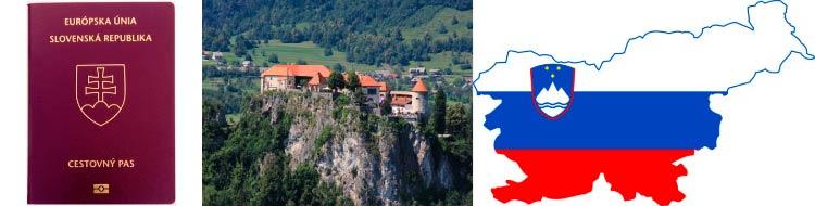ВНЖ за недвижимость Словении