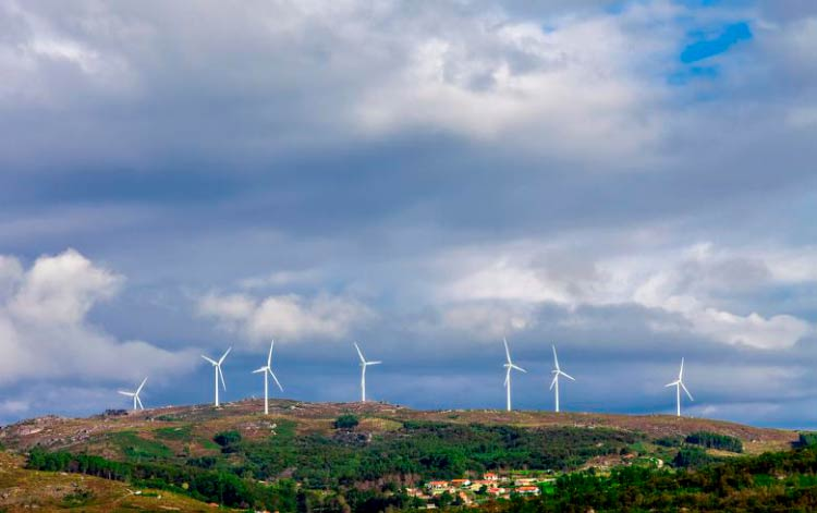 Зеленая виза Португалии