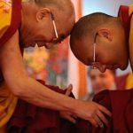 Гражданство за инвестиции Доминики: отзывы будущего Далай-ламы