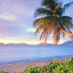 LLC или IBC в Невисе – все еще надёжный способ защиты Ваших активов от судебных исков в 2019