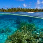 Офшор на Маршалловых островах в 2020 году