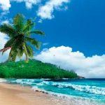 Компания на Сейшелах с открытием счета в Capital Security Bank на о. Кука