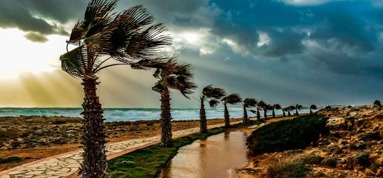 Реестр бенефициаров на Кипре начнет действовать с января 2020 года
