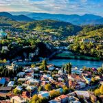 Правовые статусы бизнеса в Грузии со льготным налогообложением