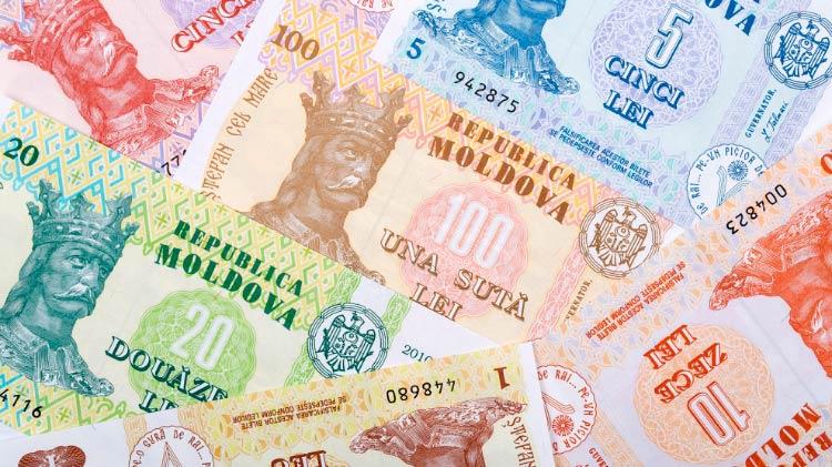ВНЖ Молдовы при открытии бизнеса