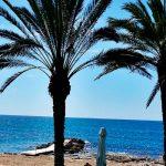 Новая модель бизнеса Кипра – борьба за природный газ вместо закрытых счетов