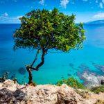 Фонды Кипра, их различия между собой, новые возможности в новых условиях