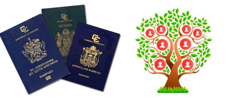 русские, оформляющие гражданство