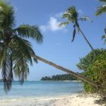 Регистрация компании IBC на Маршалловых островах со счетом в банке Маврикия
