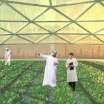 ОАЭ предлагают значительные выгоды для стартапов и инноваций в области сельского хозяйства