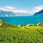 Зарегистрировать компанию GmbH в Швейцарии в кантоне Во (VD) – от 2500 CHF