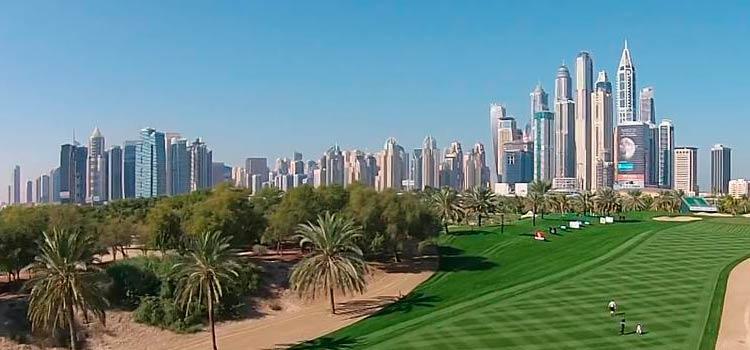 открыть бизнес в Дубае
