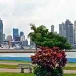 Компания в Панаме со счетом в платёжной системе Trustcom Financial