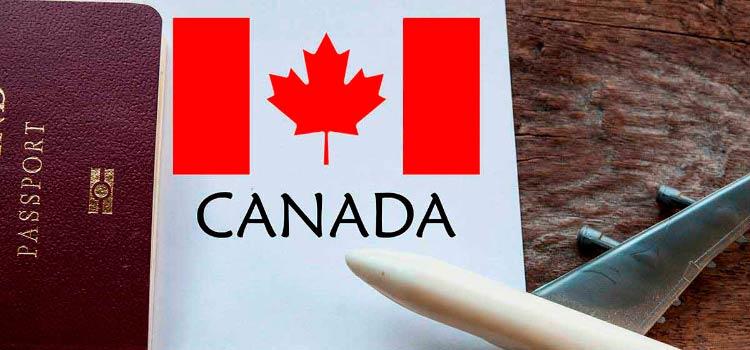 Какие профессии позволят получить профессиональную визу Канады