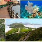 Карибское гражданство за инвестиции: сравнение экономик (часть 1)