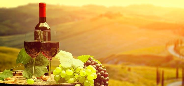 Винный тур в Сербию — от 110 EUR