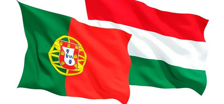 бизнес: в Венгрии и Португалии